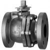 BALL VALVES AND Y-STAINER 125FCTB 125P 2''