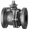 BALL VALVES AND Y-STAINER 10FCTR 10K 5''