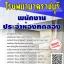 โหลดแนวข้อสอบ พนักงานประจำห้องทดลอง โรงพยาบาลราชบุรี thumbnail 1