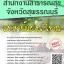 โหลดแนวข้อสอบ แพทย์แผนไทย สำนักงานสาธารณสุขจังหวัดสุพรรณบุรี thumbnail 1