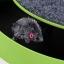 เพียง 229 บ. กับกล่องของเล่นแมวไล่จับหนู (สีเขียว) ให้แมวของคุณออกกำลังกาย สดชื่น แจ่มใส แข็งแรง thumbnail 4