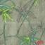CHI35202 thumbnail 1