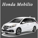 พรมไวนิลดักฝุ่น Honda Mobilio