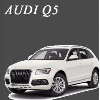 พรมไวนิลดักฝุ่น Audi Q5