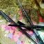 ขายส่งเมอเรสก้า ดินสอเขียนคิ้วเมอเรซกา Merrez'ca Perfect Brow Pencil 1.5mm #Brown เขียนง่ายมากค่ะ เนื้อนิ่มกำลังดี ไม่เป็นก้อน ไม่หักง่าย ที่สำคัญไม่ต้องเหลาค่ะ thumbnail 3