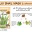 ขายส่งครีมซองฟูจิ Fuji snail mask ฟูจิสเนล มาส์ค มาส์คหอยทาก thumbnail 2