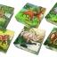 จิ๊กซอว์บล็อคไม้สามมิติ 6 ด้าน 6 ภาพ thumbnail 5