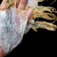 ปลาหมึกหอมแห้ง เบอร์3 (ครึ่งกิโลกรัม) thumbnail 1