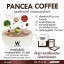 PANCEA COFFEE แพนเซีย คอฟฟี่ thumbnail 3