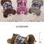 กระเป๋าน้ําร้อนไฟฟ้า Y420-6 หมี UK สีน้ำตาล thumbnail 1