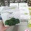 Midori Healthy Greens มิโดริ เฮลท์ตี้ กรีน 10 ซอง. thumbnail 1