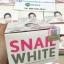 Snail White Snail Secretion Filtrate Moisture Facial Cream สเนลไวท์ สเนล ซีครีชั่น ฟิวเตรท มอยเจอร์ เฟเชี่ยว ครีม thumbnail 1