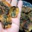 อาหารทะเลแห้ง หอยแมลงภู่ผ่า (2ขีด) thumbnail 2