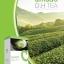 Amado D.H Tea อมาโด้ ดี.เอช ที บรรจุ 15 ซอง [ซือ 2 กล่อง แถม 1 กล่อง] thumbnail 1