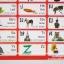 กระดาน Playmat 2in1 [ไทย-อังกฤษ] thumbnail 13