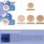 Baby Bright White Plankton Matte Cushion SPF50 PA+++ เบบี้ไบร์ท ไวท์ แพลงตอน แมท คูชั่น เอสพีเอฟ50 พีเอ+++ thumbnail 3