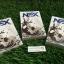 Nex Day เน็กซ์เดย์ ลดน้ำหนัก รสช็อกโกแลต ไม่ต้องออกกำลังกาย ก็ลด สูตรดื้อยา 1 กล่อง บรรจุ10ซอง thumbnail 1