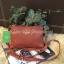พร้อมส่ง 3 สี KATE SPADE New York Mini Crossbody Bag thumbnail 9