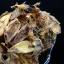 ปลาหมึกแห้ง หมึกกระตอย (ครึ่งกิโลกรัม) thumbnail 1