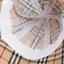 หมวกปีกบานลายสก๊อตครีม thumbnail 10