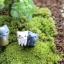 น้องเหมียวจัดสวน (เกาะขอบ) thumbnail 4