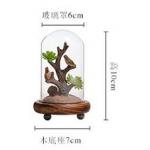 โหลต้นไม้ สูง 10cm