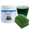 Chlorophyll Powder คอลลาฟิลUnicity