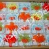 ของชําร่วย แม็กเน็ต แม่เหล็กติดตู้เย็น MA-pd02-5