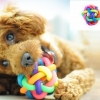 ของเล่นสุนัข บอลยางสีรุ้ง