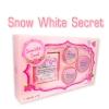 ครีมสโนวไวท์ซีเคร็ท Snow White Secret ปลีก 320 /ส่ง 280