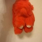 กระต่ายสีส้ม 13cm