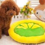 เบาะนอนสุนัขและแมวรูปผลไม้ไซส์เล็ก