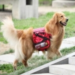 Dog Backpack สำหรับสุนัขเดินทางสีแดง