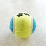 ของเล่นสุนัข ลูกบอสเทนนิส (ราคาพิเศษ+คลิกดูด้านใน)