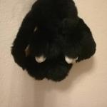 กระต่ายสีดำ 13cm