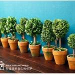 กระถางต้นไม้ประดิษฐ์ Tree14