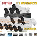 ชุดติดตั้งกล้องวงจรปิดBE-R13 (1.3 ล้าน) ir 30 เมตร 15 ตัว (DVR 16 CH.,สายRG6มีไฟ 380 เมตร,HDD 3 TB)