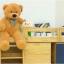 ตุ๊กตาหมี ลืมตา ขนาด 1.0 เมตร thumbnail 3