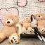 ตุ๊กตาหมีสก็อตต์ Scott Bear ไซส์ 1.6 เมตร thumbnail 9