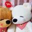 ตุ๊กตาหมี หลับตา ขนาด 1.0 เมตร thumbnail 2