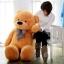 ตุ๊กตาหมี ลืมตา ขนาด 2.0 เมตร thumbnail 2