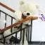 ตุ๊กตาหมี หลับตา ขนาด 1.2 เมตร thumbnail 12