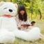 ตุ๊กตาหมี หลับตา ขนาด 1.8 เมตร thumbnail 9