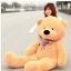 ตุ๊กตาหมี ลืมตา ขนาด 2.0 เมตร thumbnail 6