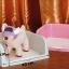 ห้องน้ำสุนัขแบบมีขอบกั้นสีชมพู thumbnail 1
