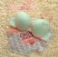 Pre Order ชุดชั้นในสีสันสดใน สำหรับสาววัยรุ่น เพิ่มความมั่นใจให้กับสาวๆ ด้วยฟองน้ำ ดันทรงสวย thumbnail 4