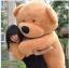 ตุ๊กตาหมี ลืมตา ขนาด 2.0 เมตร thumbnail 1
