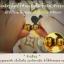 V-C INJECTION กล่องเขียว 50 บาท (ยกกล่อง ) thumbnail 2