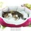 เบาะนอนสุนัขและแมวสีชมพู thumbnail 1