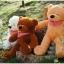 ตุ๊กตาหมี หลับตา ขนาด 1.0 เมตร thumbnail 5